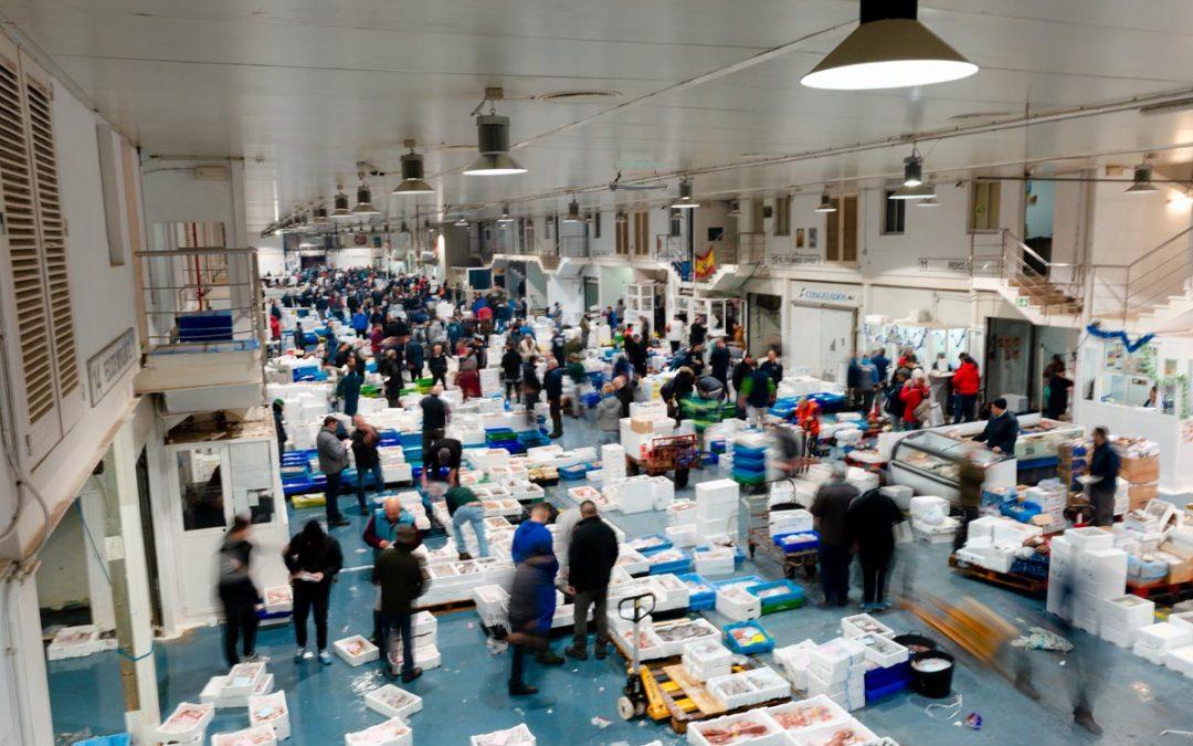 Concurso Control Accesos al Pabellón de Pescados