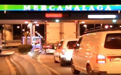 MERCAMALAGA, UN NIDO NOCTAMBULO. REPORTAJE EN VIDA ECONOMICA